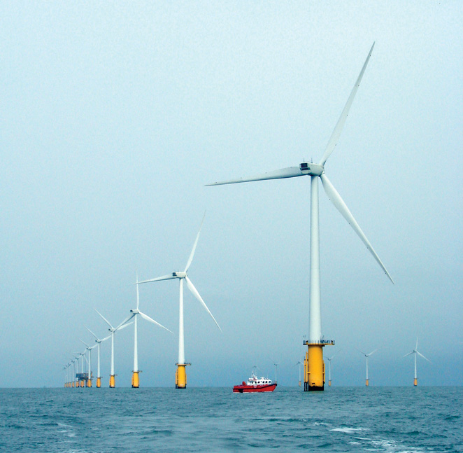 Turbines that are part of the Thanet Offshore Wind Farm off the coast of England.  Given that ocean wind energy is a new industry, the long-term effects of wind farms on the benthic and marine environment are not known. (John Williamson photo)
