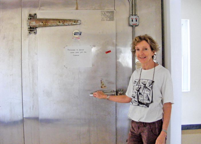 "In 2011, when the LPRC moved into its home at the Marine Research Station in Gloucester, Director Molly Lutcavage said of the facility's huge walk-in freezer, ""Guts and gonads.  Stomach contents.  That's what we'll store in here.  This makes it a real fish lab.""  Gonad analysis was at the heart of the new findings on western Atlantic bluefin spawning age by the Lutcavage team of researchers. (Lorelei Stevens photo)"