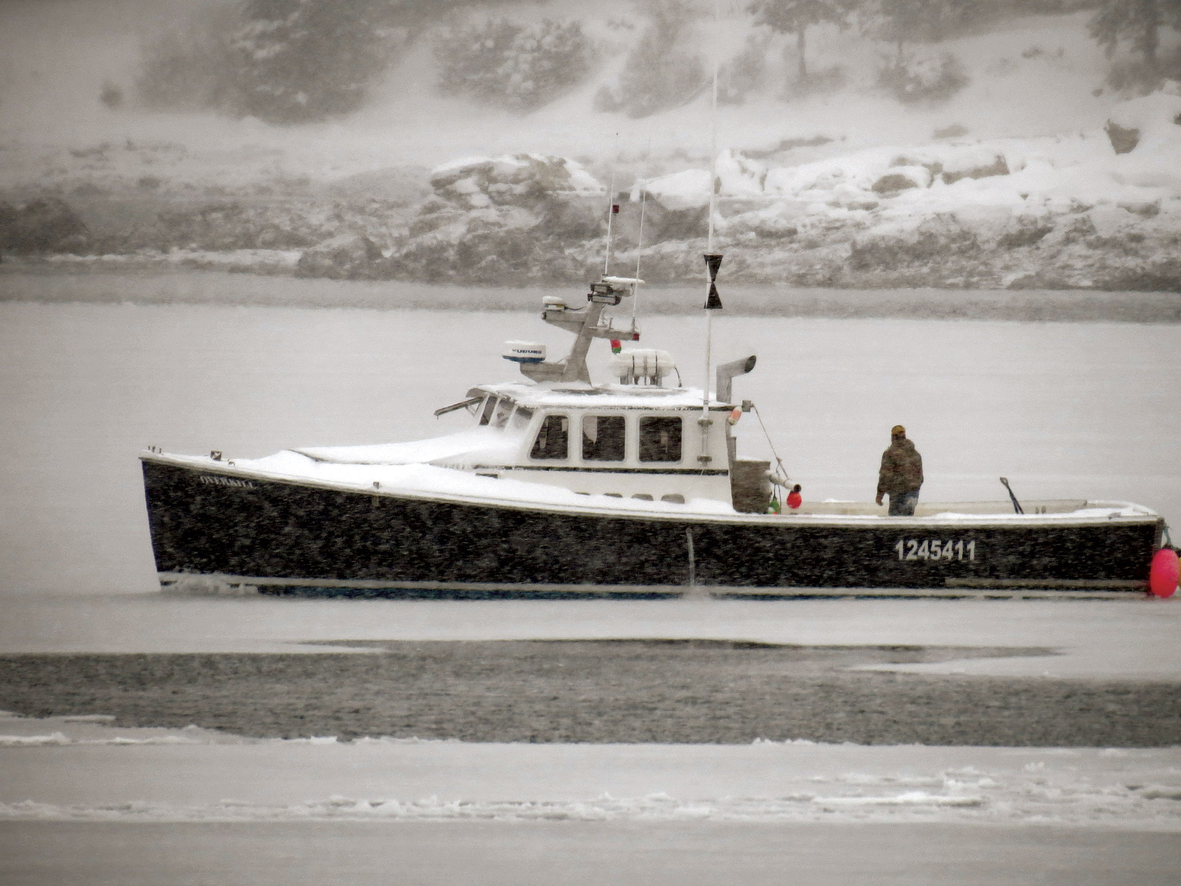 Jimmy Wotton aboard his lobster boat Overkill out in a snowstorm breaking ice.  Friendship fishermen tried in vain to keep the harbor and surrounding bay open.  I took this shot through the window looking out over my desk. (Diane Cowan photo)