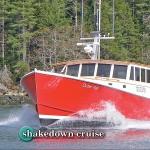 shakedown-fea