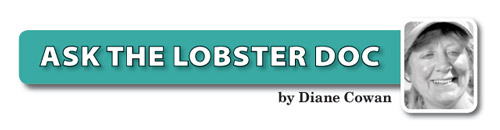 ask-the-lobster-doc-Cowan