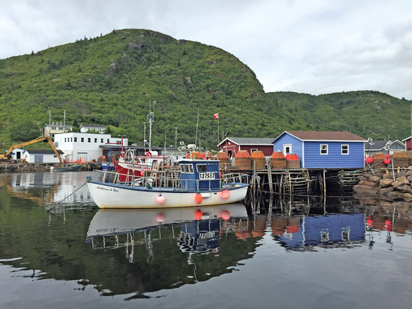 Fishing boats in Petty Harbor, Newfoundland.  (Erik Chapman photo)