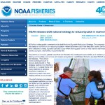 noaa-webpage