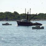 safeboat-DSC_4137
