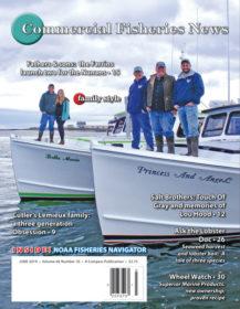 June 2019 – Online Edition