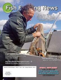 Combination Online & Print Subscriptions