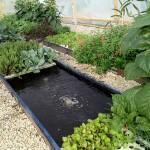 plant_feeding_system