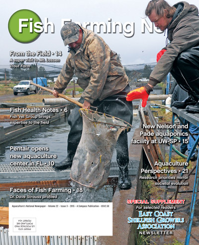 FFN_3_15-cover