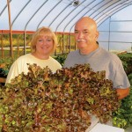 Doug and Jeni Blackburn own and operate Fresh Harvest Farm and love to share their passion for their business.