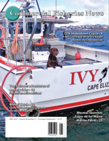 May 2019 – Online Edition